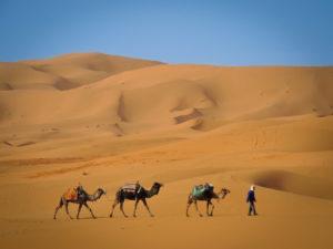 titelbild_marokko_2016-2